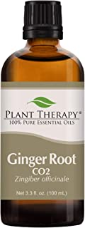 Plant Therapy Ginger Root CO2 Essential Oil 100% Pure, Undiluted, Natural Aromatherapy, Therapeutic Grade 100 mL (3.3 oz)
