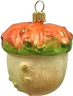 Pinnacle Peak Trading Company Turban Pumpkin Squash Polish Glass Christmas Tree Ornament Vegetable Fruit Food