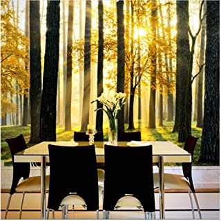 xbwy Custom 3D Natural Scenery Mural Wallpaper Forest Under The Sunshine Beautiful Scene Wall Paper for Living Room Tv Sofa Backdrop-120X100Cm