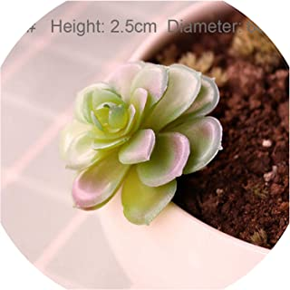 Best homesense plant pots Reviews