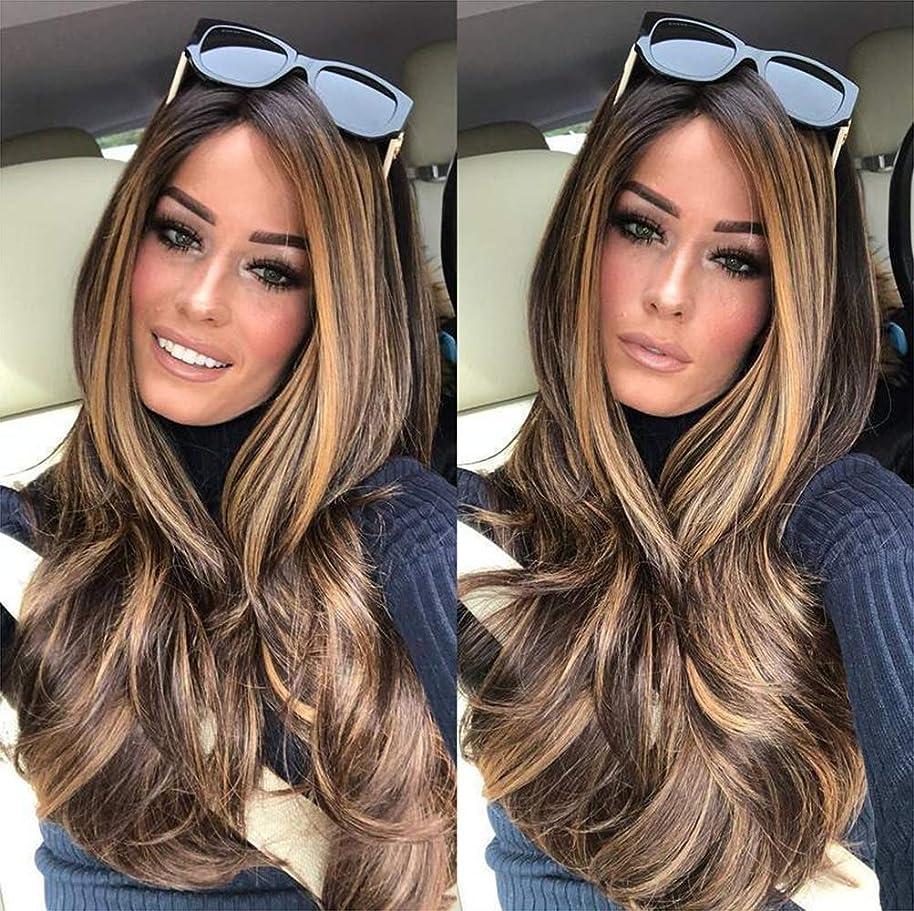 悪いエンドウ拳女性かつらフル巻き毛のかつらナチュラルカラーデイリーマッチミックスカラー65 cm