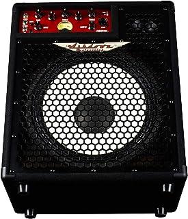 Ashdown Original C112-300 - Amplificador combo para bajo