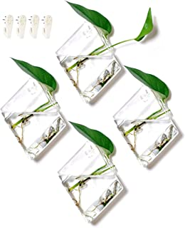 GeoTerrariums Diamond Terrariums Hanging Wall Planters, Clear Glass (7 x 5 inches), Pack of 4