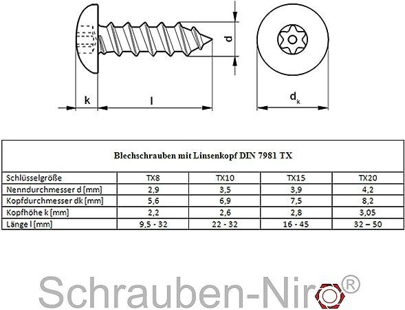 mit Spitze 100 St/ück - Form C - ISO 14586 - DIN 7982 Innensechsrund Antrieb TX - Edelstahl A2 V2A SC7982 3,9x50 - Blechschrauben mit Senkkopf
