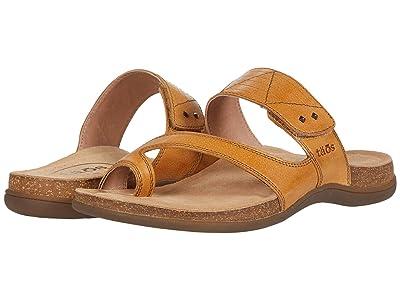 Taos Footwear Zone (Wheat) Women