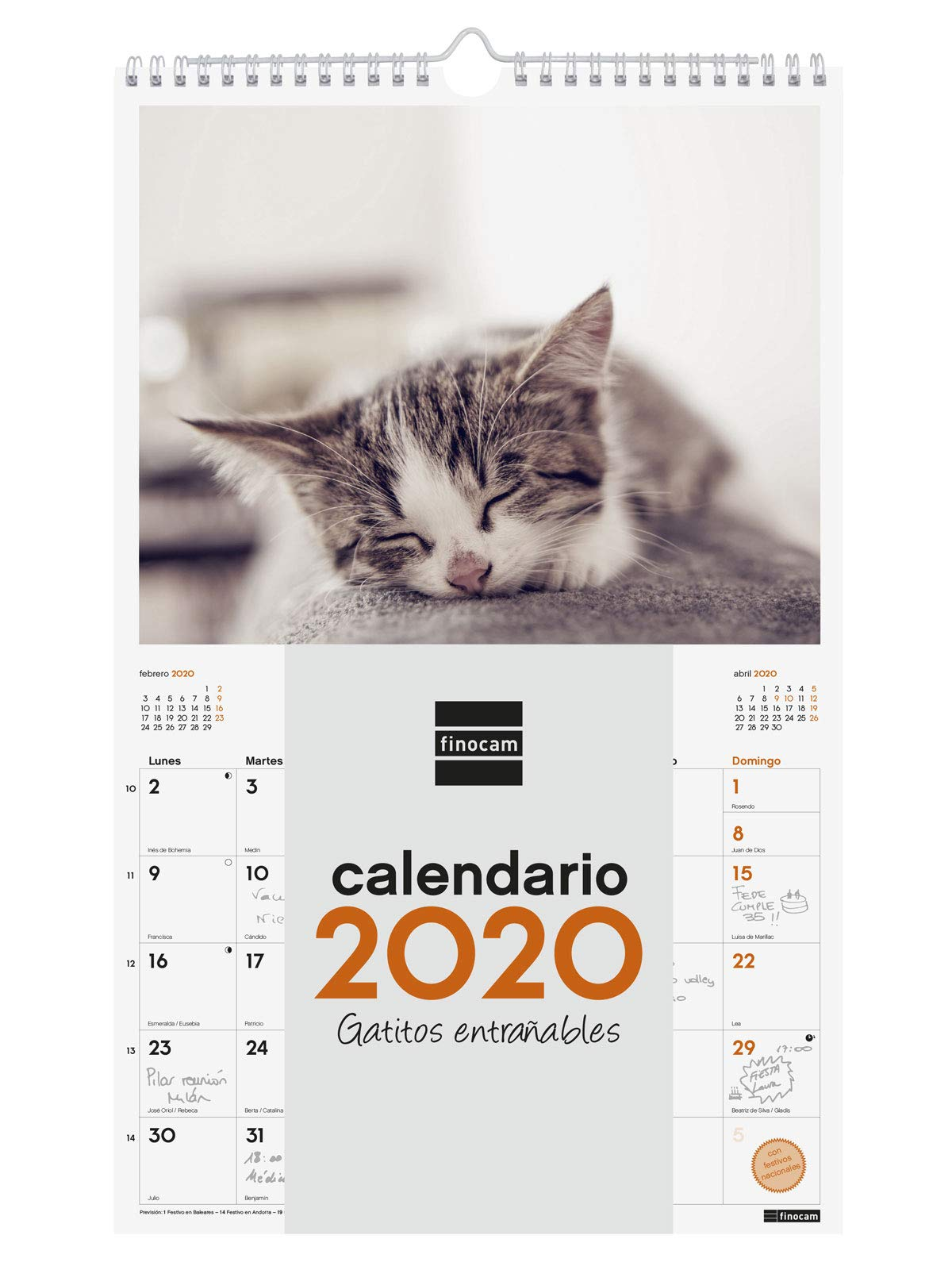 Finocam - Calendario de pared 2020 Imágenes Espiral 25x40 Gatitos español: Amazon.es: Oficina y papelería