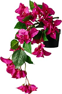 """Digital Shoppy IKEA Artificial Potted Plant, in/Outdoor Bouganvilla, Hanging Cerise, 9 cm (3 ½"""")"""