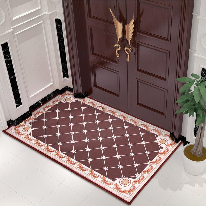 Doormat Carpet Doormat Door,Entrance,[Hall],Household use,[Bathroom],Indoor mats Living Room,Bedroom mats [Absorbent],Anti-skidding-H 90x140cm(35x55inch)