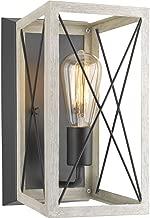Progress Lighting P710012-143 Briarwood Graphite One-Light Wall Sconce,