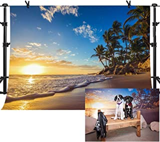 MME 10x7ft Sunset Beach Palm Tree Background for Summer Vacation Photography Backdrop Vinyl Photograph Video Studio Props PME575