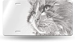 XIEDEC Cat Head Portrait Furry Cute Head 6x12inchs Feel Metal Tin Sign Plaque for Home,Bathroom and Bar Wall Decor Car Vehicle License Plate Souvenir Car Decoration