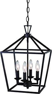 """Trans Globe Imports 10264 ROB Transitional Four Light Pendant from Lacey Collection Dark Finish, 12.00 inches, 12"""", Rubbed..."""