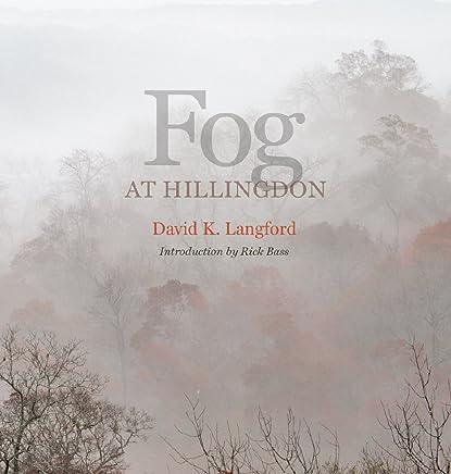 Fog at Hillingdon
