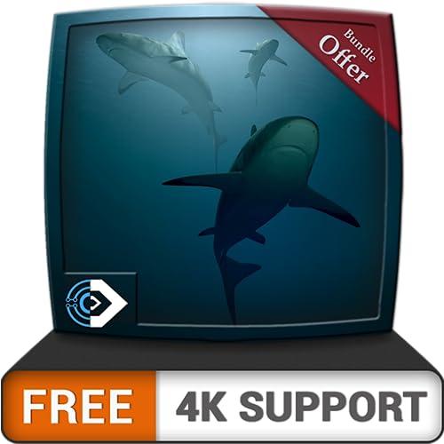 Acuario de aguas profundas gratis HD: disfrute del acuario submarino en su televisor HDR 4K, televisor 8K y dispositivos de fuego como fondo de pantalla, decoración para las vacaciones de Navidad, tem