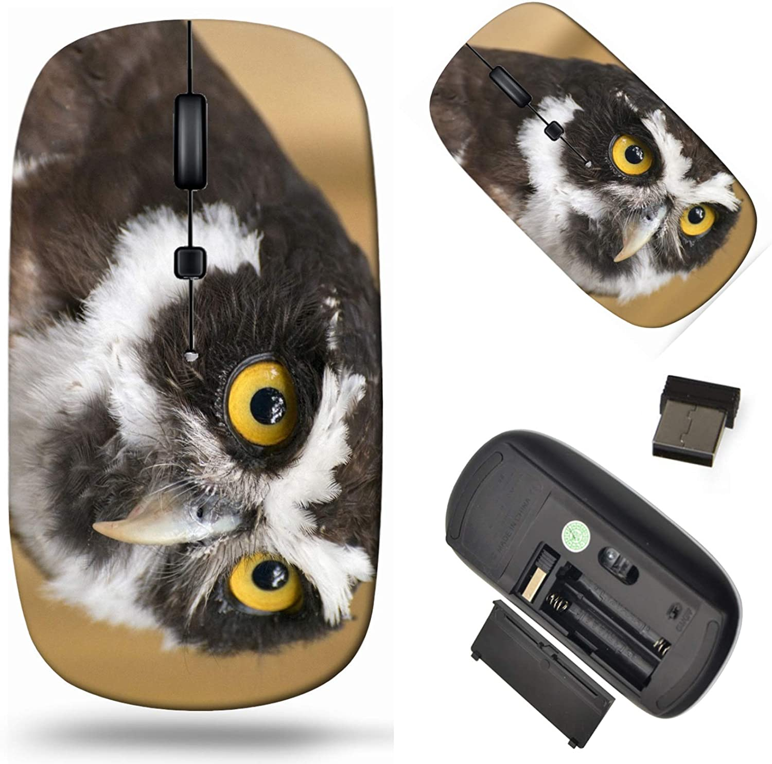 Wireless Computer Mouse 2.4G with Laptop We OFFer at cheap prices Cor USB Fresno Mall Receiver
