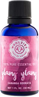 Woolzies Best Quality 100% Pure Ylang Ylang Essential Oil | Healthy Skin/Hair, Calming Effect, Lifts Mood | Natural Undilu...