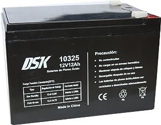 DSK, Batería Plomo Acido 12V 12 Ah, Ideal para Alarmas