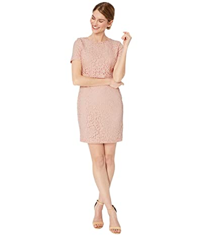 LAUREN Ralph Lauren Petite Lace Popover Dress (Pink Macaron) Women