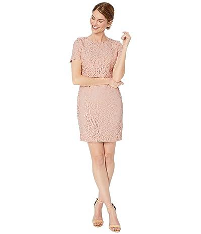 LAUREN Ralph Lauren Petite Lace Popover Dress (Pink Macaron) Women