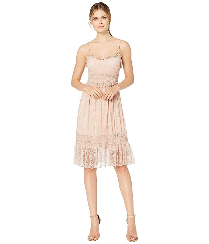 Scully Savy Lined Tiered Lace Dress