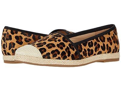 David Tate Paradise (Leopard Nubuck Fabric) Women