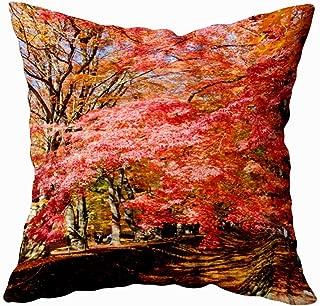 Douecish 20X20 Pillow Case, Father Gift Cushion Soft Home Sofa Decorative Throw Pillow Cases The Beautiful Autumn Color Japan Maple Leaves in Maple Corridor Season Kairo Double Printed