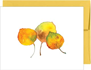 Aspen Treasure Note Cards Thank You Cards All Occasion Greeting Cards Stationery - Boxed Set of 20 Cards and Matching Envelopes