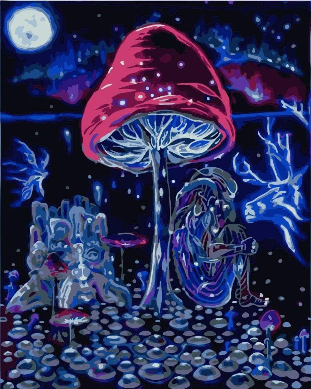 HRKDHBS Paint by Numbers Mushroom 40X50Cm (with Frame) DIY Acryl