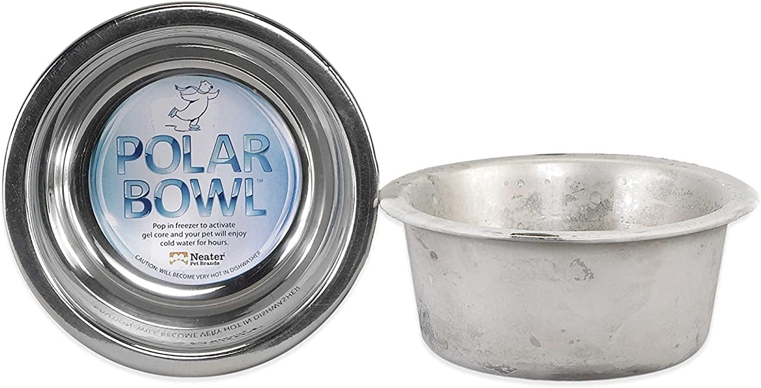 Neater PET Brands Polar Bowl by Freezable Water Bowl for Pets  Keep Water Cold for Hours (Medium)