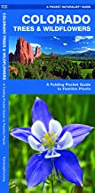 Colorado Trees & Wildflowers: A Folding Pocket Guide to Familiar Plants (Wildlife and Nature Identification)