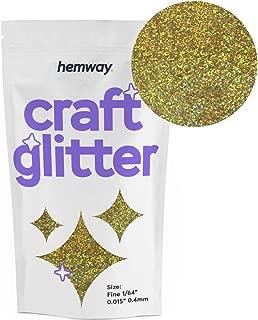 Hemway Craft Glitter 100g 3.5oz FINE 1/64