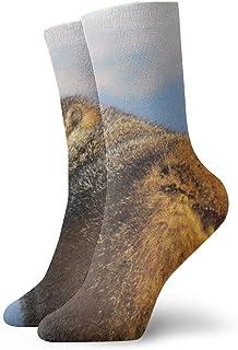 Medias deportivas transpirables para hombres y mujeres Marrón Castor Marmota Gruesas Calcetines divertidos divertidos de poliéster 30cm (11.8 pulgadas)