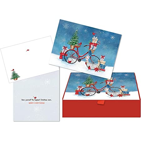 Lpg Performing Arts Boxed Christmas Card Set Christmas Bike Set Of 18 Cards With Full Color Inside Designs 18 Envelopes 1 Design Per Box 52797 Office Products