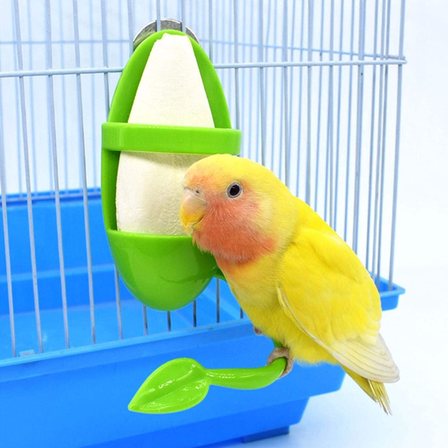 SHZONS Parrot Bird Today's only Food Pole Feeder Popular Container V