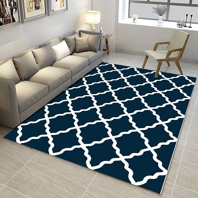 Popular brand HAODELE Rugs Kids Mat 80x100cm Cozy t Shaggy Easy Charlotte Mall Carpet Bedside