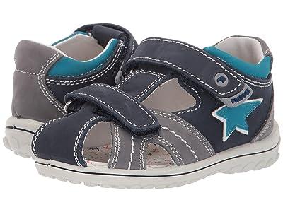 Primigi Kids PSW 33781 (Infant/Toddler) (Blue/Grey) Boy