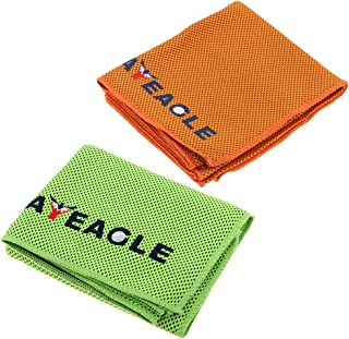 F Fityle 2X Soft Comfortable Cooling Towel with Net Holes for Sports, Workout, Fitness, Gym, Yoga, Pilates, Travel, Camping,100 x 30cm