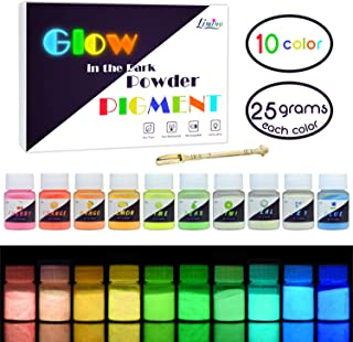Glow In The Dark Pigment Powder - 10 Color x 25g Epoxy Resin Color Pigment Dyes for DIY Slime Coloring Kit - Luminous Skin Safe Self Glowing for Acrylic Paint, Nail Art, Painting, Crafts - 0.88oz Each