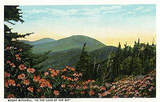 Blue Ridge Mountains, North Carolina - Mount Mitchelll Scene - Vintage Halftone (9x12 Art Print, Wall Decor Travel Poster)