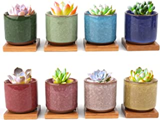 Lawei 8 Pack Ceramic Ice Crack Succulent Plant Pot with Bamboo Tray - Cactus Plant Pot Flower Pot Container Planter for Home Garden Office Decoration