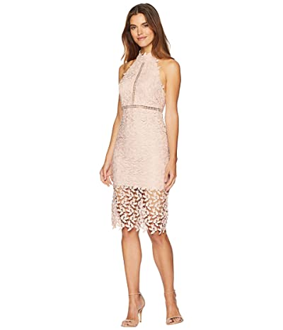 Bardot Gemma Dress (Latte Pink) Women