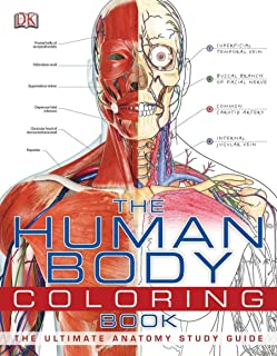 Best coloring pages body Reviews