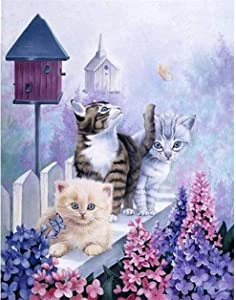 Stamped Cross Stitch Kits for Adults Beginner-Counted Cross Stitch Kit Garden Cat and Butterfly11CT Pre-Printed Pattern Fabric Embroidery Crafts Home Decor-16x20 inch