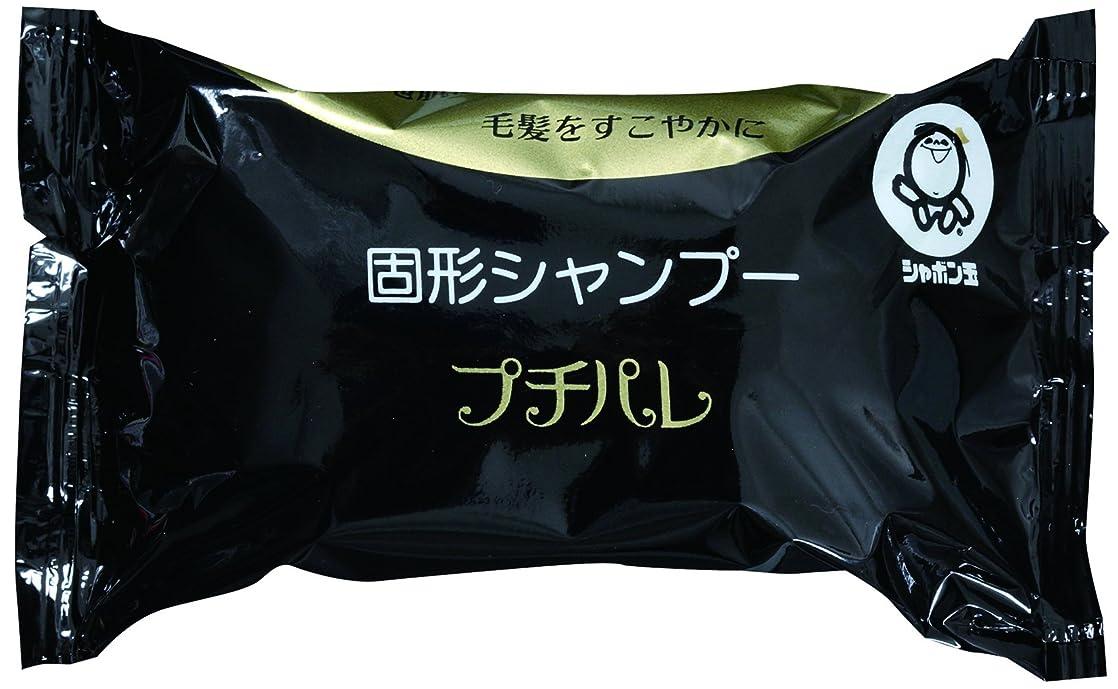 キウイコイン服を洗うシャボン玉 固形シャンプー プチパレ 100g