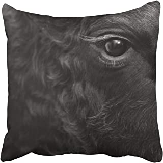 Emvency Cow Fighting Bull Head Detail in Black and White Eye Fight Animal Sport Attack Cattle Spain Throw Pillow Covers 20x20 Inch Decorative Cover Pillowcase Cases Case Two Side