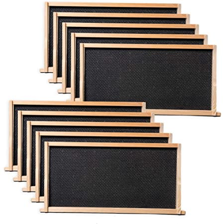 Little Giant 5-Pack Medium Hive Replacement Frame 3PK