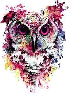 Best 3d owl art Reviews