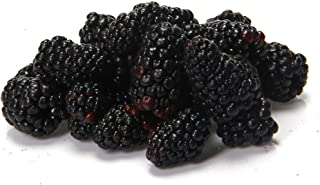Blackberries Conventional, 6 Ounce