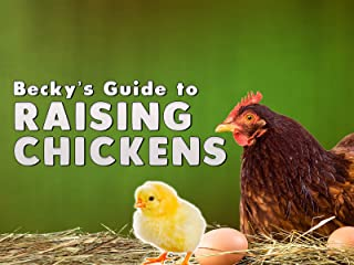 Becky's Guide to Raising Chickens
