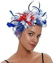 Spikerking Women's Church Wedding Tea Party Fascinator Kentucky Mesh Feather Hat